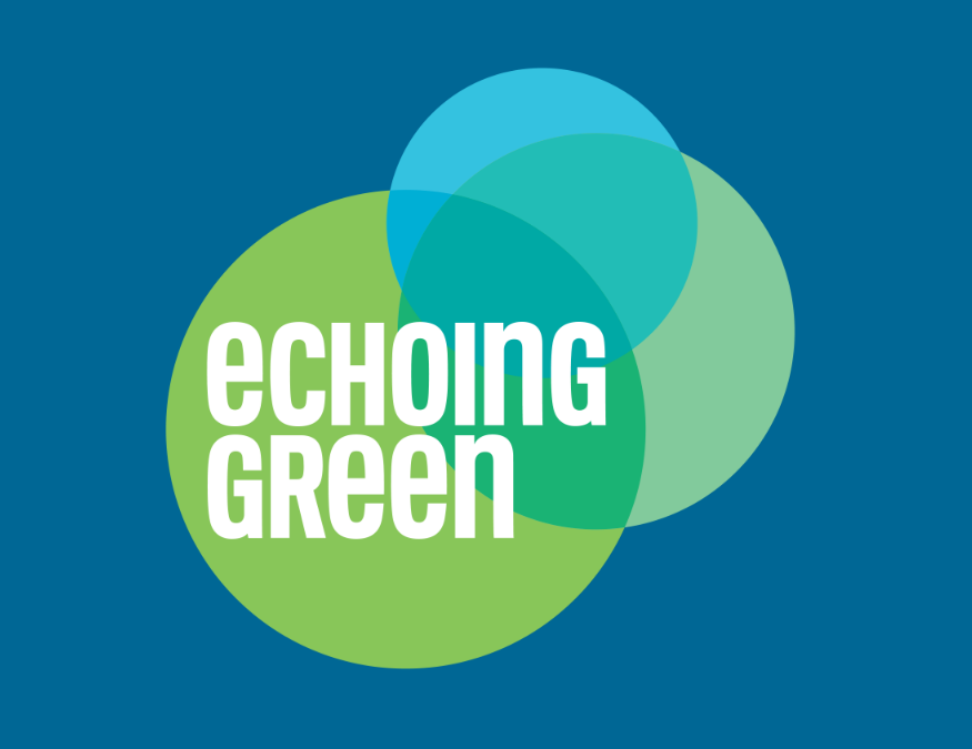 MORTAR's Allen Woods & Derrick Braziel named 2017 Echoing Green Finalists