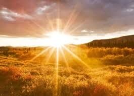 Sunny days just make me happy.